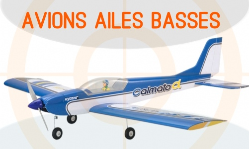 Ailes basses